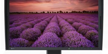 Unbedingt 4K? 6 Monitore für Bildbearbeiter
