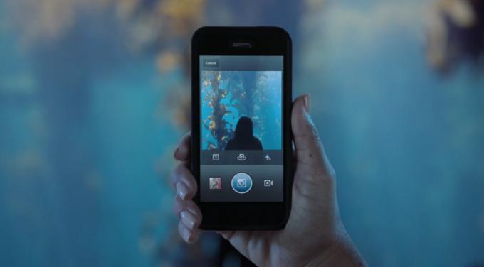 Instagram führt die Einbettung von Videos ein