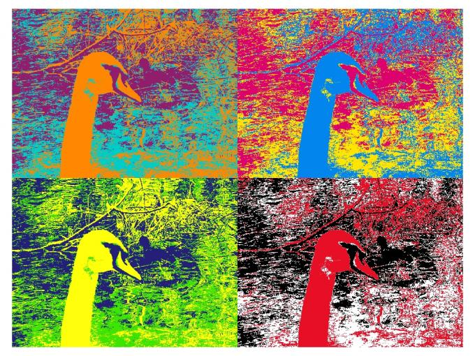 """Mit dem """"Warhol""""-Filter von Camera Effects wird jeder zum Künstler."""