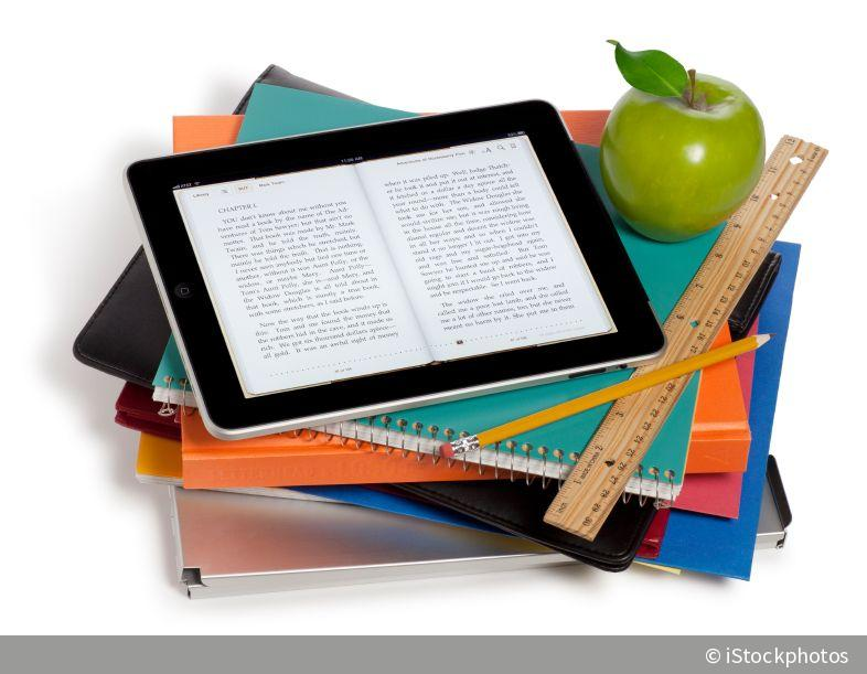 Assessing an effective undergraduate module teaching ...