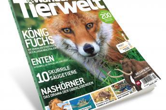 """""""Wunder der Tierwelt"""": Interaktives Wildlife-Magazin bringt die Tiere direkt ins Wohnzimmer"""
