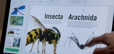 Bug Chicks: Neue Windows 10-Videos mit Seitenhieb auf den Mac