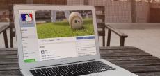 Facebook will sich einen der lukrativsten Märkte der Welt sichern - Live-Sport-Übertragungen