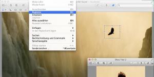 Photoshop adé: Bilder in der kostenlosen Vorschau bearbeiten